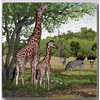PUZZLES BOIS ANIMAUX SAUVAGES GIRAFES 49 PIECES